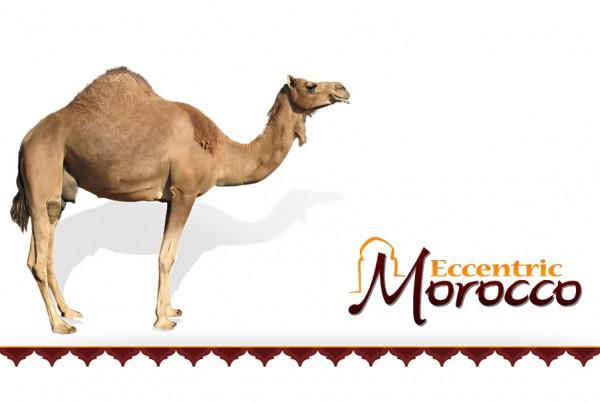 Eccentric-Morocco